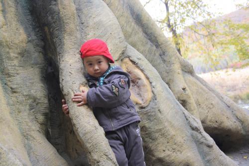哈爾濱市尚志幼兒園照片
