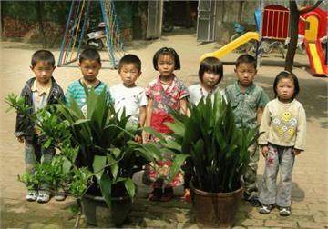 罗庄村小松园幼儿园罗庄村小松园幼儿园照片9