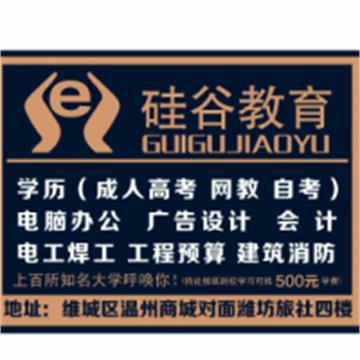 济南市硅谷职业培训学校